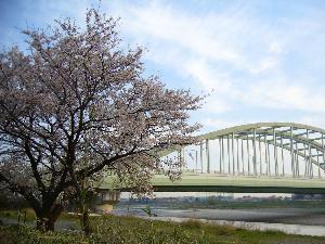 0404多摩川中野島方面- 005.png