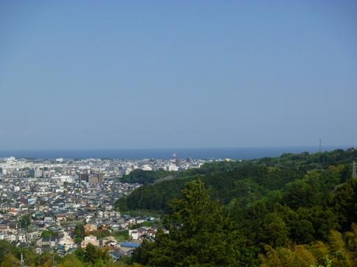 0429 大雄山 (32)s.jpg