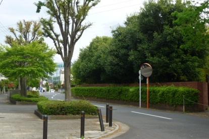 0501 よこやまの道 (11)s.jpg