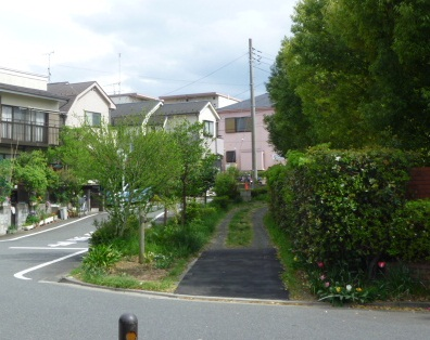 0501 よこやまの道 (12)s.jpg