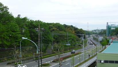 0501 よこやまの道 (32)s.jpg