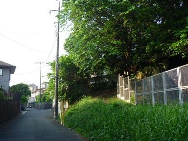 0520 南側トレイル (8)s.jpg