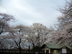 0330枡形山- 018.png