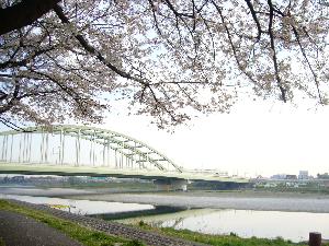0404多摩川中野島方面- 003.png