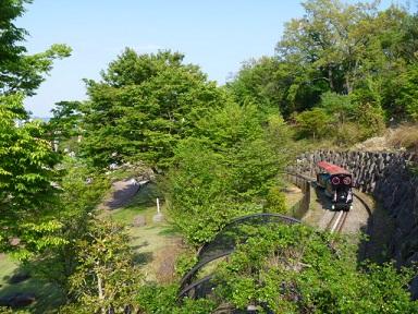 0429 大雄山 (51)s.jpg
