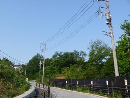 0520 南側トレイル (15)s.jpg