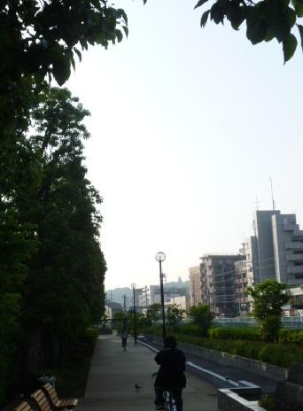 0520 南側トレイル (25)s.jpg